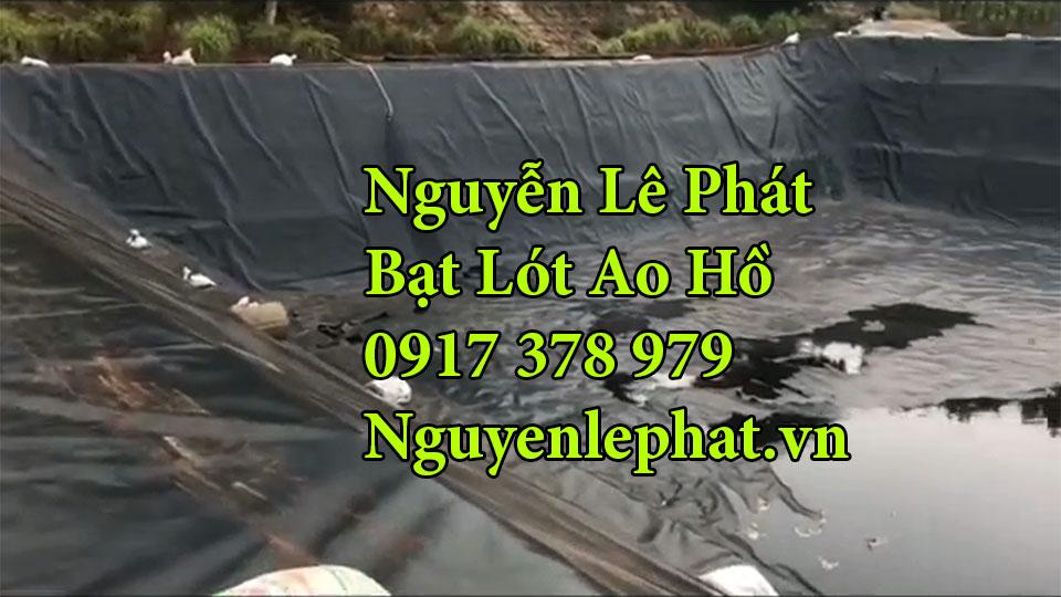 Bạt lót ao hồ chứa nước nuôi cá Long Thành Đồng Nai